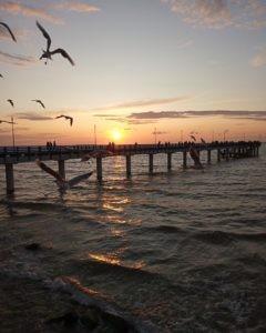 Отдых в Зеленоградске Калиниградской области: погода, отели, достопримечательности, пляж