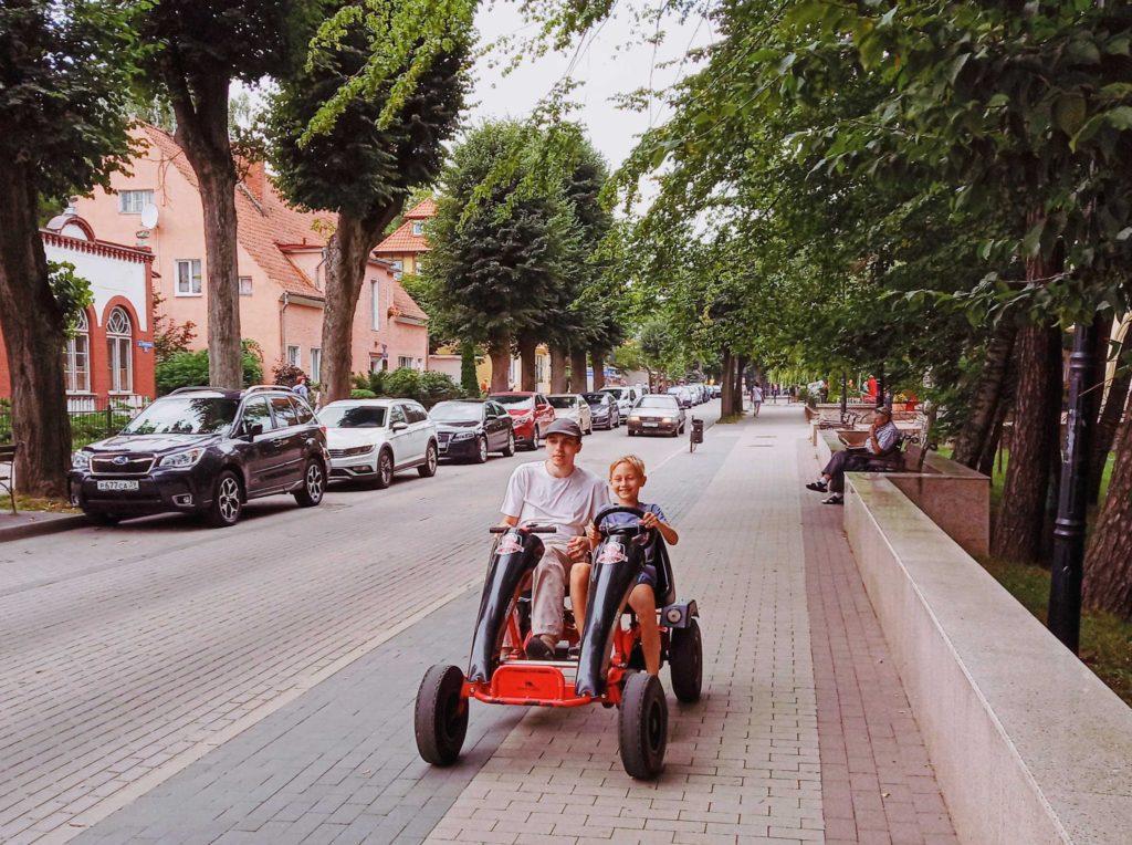 Лиственничный парк Светлогорск, аренда велосипедов